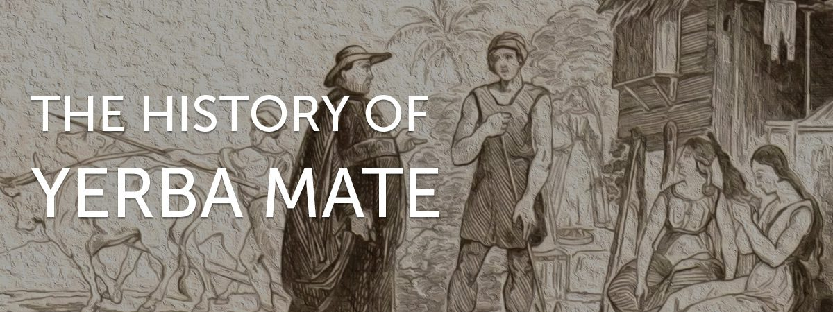The History of Yerba Mate